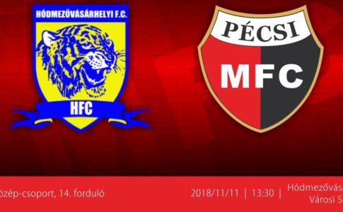 fb_hfc (1)